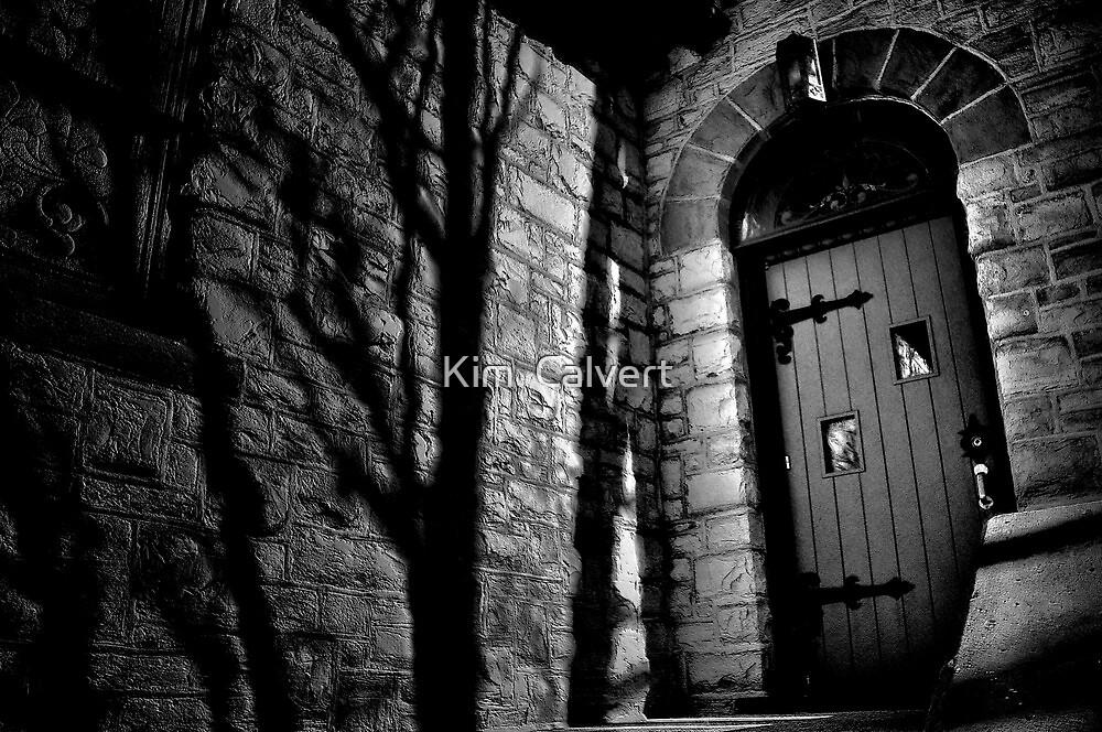 Shadows by Kim  Calvert