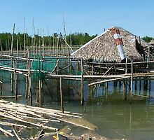House on Bamboo Stilts by dincoscolluela