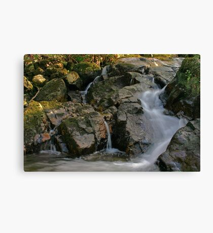 Donegal stream  Canvas Print