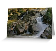 Donegal stream  Greeting Card