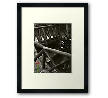 Flower In The Gloom Framed Print
