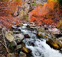 American Fork River by Ryan Houston