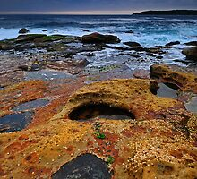 Coastline Treasures by Anton Gorlin