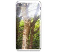 Sun Rays & Tree Bark iPhone Case/Skin