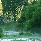 Crooked River,Talbotville by Joe Mortelliti