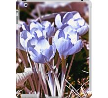 Crocus Infrared iPad Case/Skin