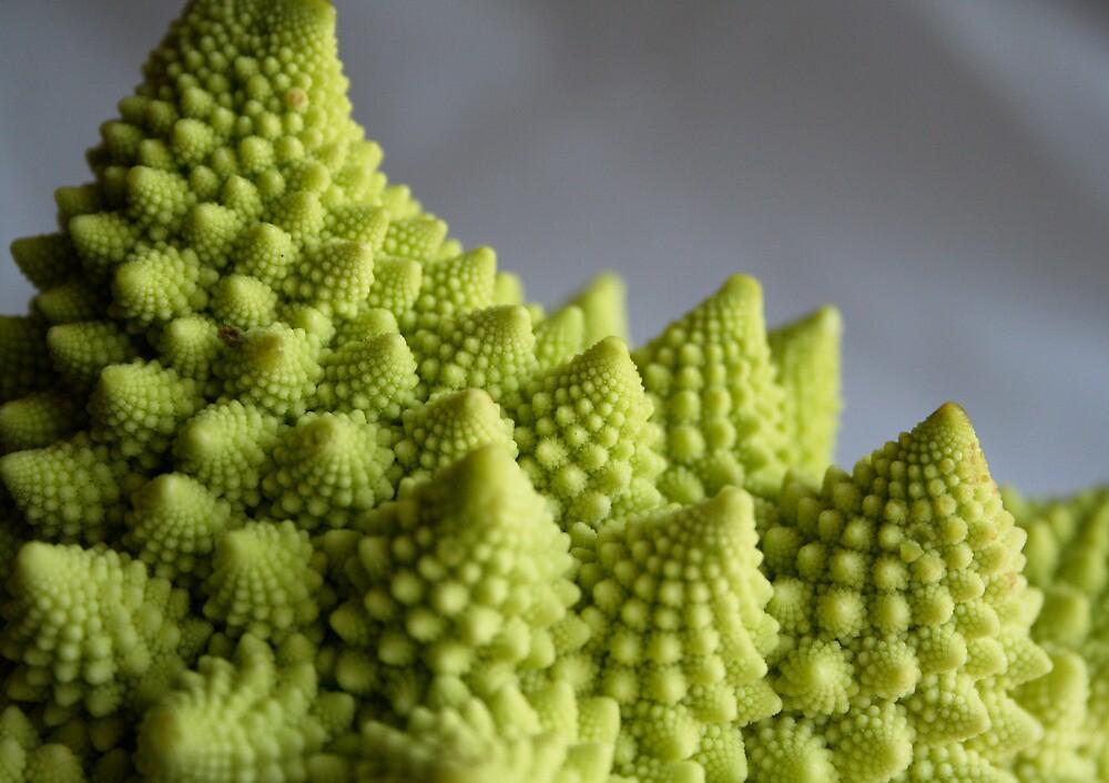 Fractal Broccoli by mjds
