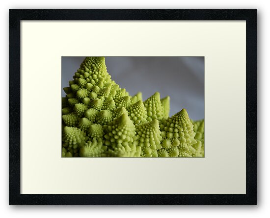 Fractal Broccoli by mjds