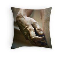 Michaelangelo's David in detail - Firenze Throw Pillow