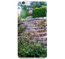 Stone Steps With Virginia Creeper. iPhone Case/Skin