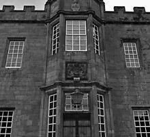 The Rear of the Castle by Ryan Davison Crisp