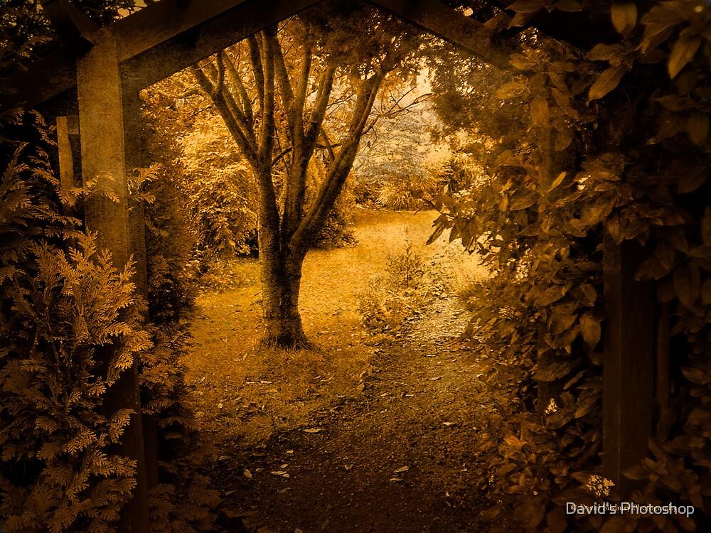 Secret Path by David's Photoshop
