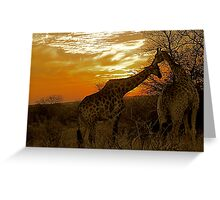good night kiss Greeting Card