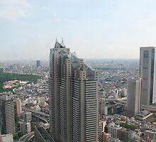 Panarama of Tokyo  by jojobob