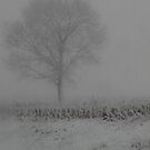 Foggy Snow by NervousNellie
