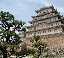 Himeji Castle With Tree  by jojobob