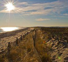 Duxbury Dunes by PatGlennon