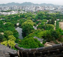 Roof View, Himeji Castle  by jojobob