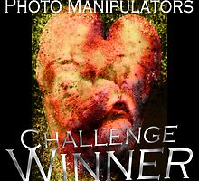 Photo Manipulators Challenge by Iva Penner