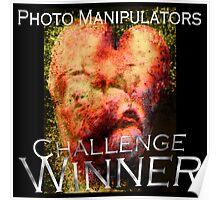 Photo Manipulators Challenge Poster