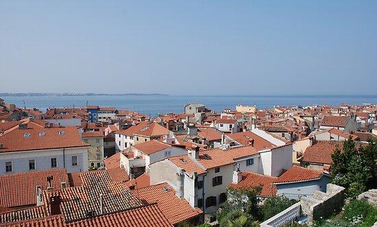 Piran Rooftops  by jojobob