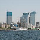 Tokyo Waterfront  by jojobob