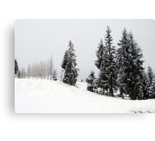 Wave of Snow and Trees Canvas Print