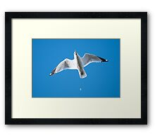 Bombs Away! Framed Print