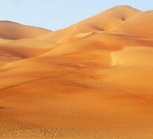 Liwa Sand dunes by focus