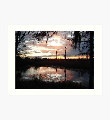 Sunset on Econfina 12-09 Art Print