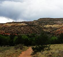 Ghost Ranch # 2 by Moniquita Martinez