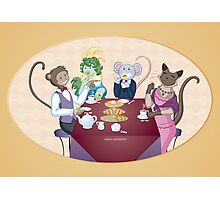 Animal Tea Party Photographic Print