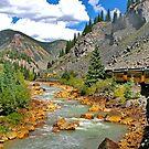 Durango to Silverton by rail by Nancy Richard
