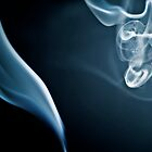 Smoke Dragon by bradlentz-photo