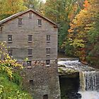 Lanterman's Mill by Monnie Ryan