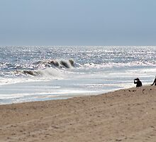 Windy Day at the Beach by Gilda Axelrod