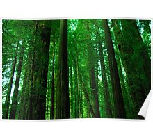 Giant Greenery Poster