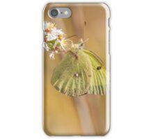 Sulphur Suspension iPhone Case/Skin