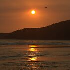Beach sunrise by Jay Spadaro