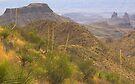 Desert Vista, Texas by Tamas Bakos