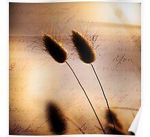 Love Letter.... Poster