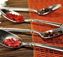 Spice by carlosporto