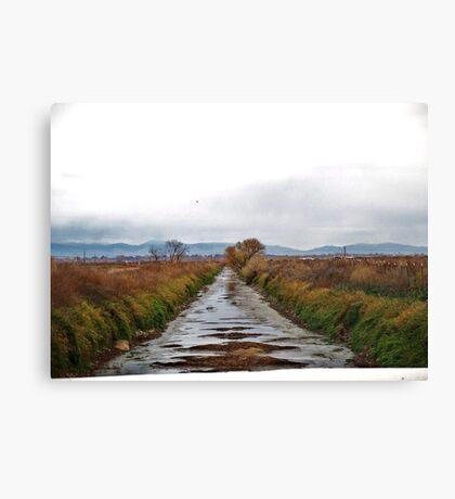 Low Farm Irrigation Canvas Print