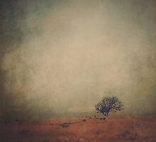Solitude by Katayoonphotos