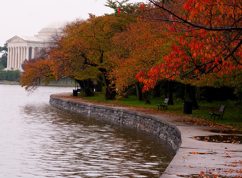 Rainy Fall Day by Eric G Brown