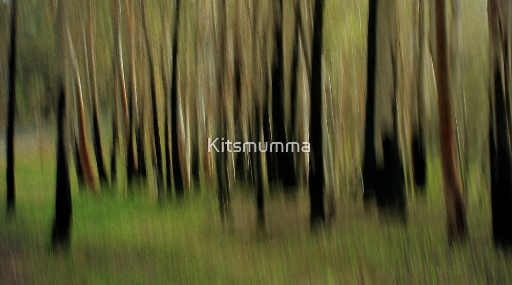 Bush Whispers by Kitsmumma