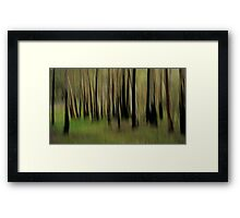 Bush Whispers Framed Print