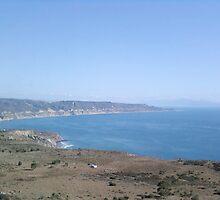 the Road to Ensenada by deedeeoriginals