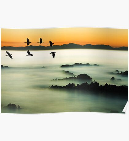 Birds over water Poster