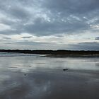 Johnson's Beach by Bethany Peiper